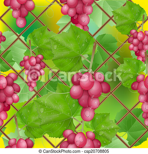 different varieties of grapes - csp20708805