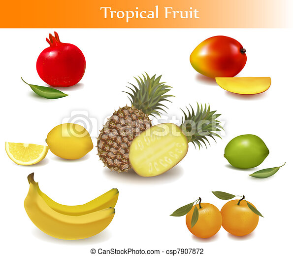 differente, frutta, gruppo, sorts - csp7907872