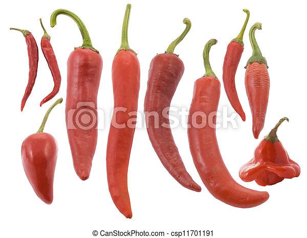 differente, pepe, caldo, tipi, peperoncino, rosso - csp11701191