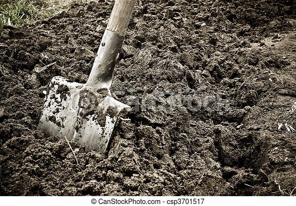 Digging - csp3701517