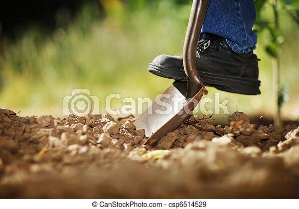Digging soil - csp6514529