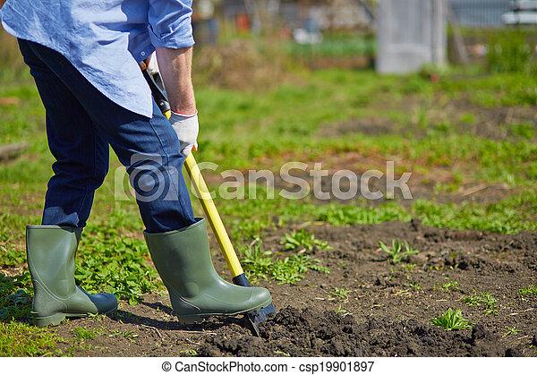 Digging - csp19901897