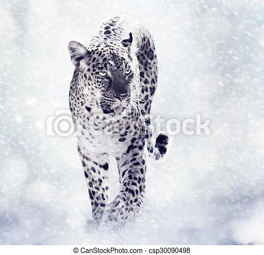 Digital Painting Of Leopard - csp30090498