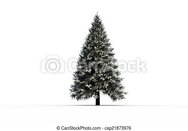 Digitally generated snowy fir tree - csp21873976