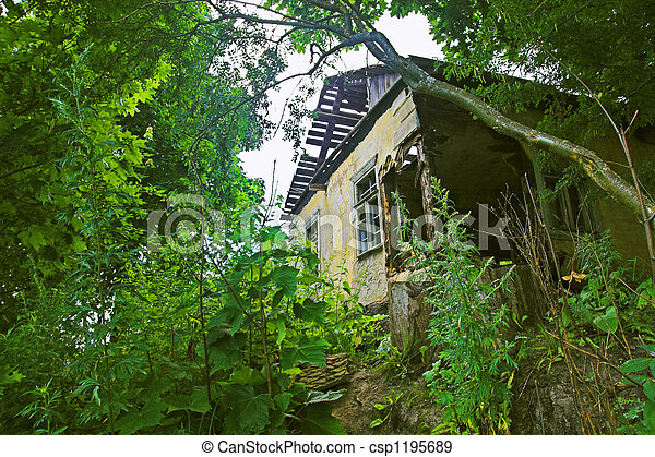 Dilapidated house in fore - csp1195689