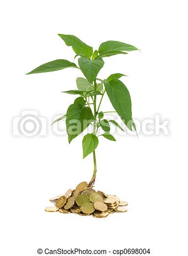 El concepto de crecimiento del dinero - csp0698004