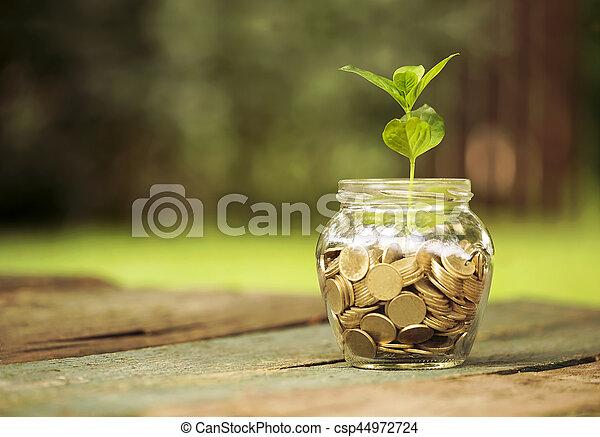 Ahorra el concepto del dinero - csp44972724