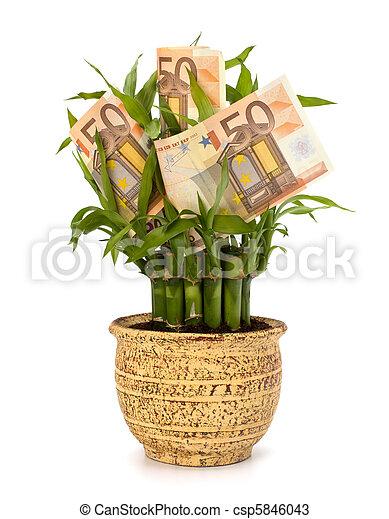 El concepto de crecimiento del dinero - csp5846043