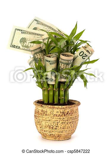 El concepto de crecimiento del dinero - csp5847222