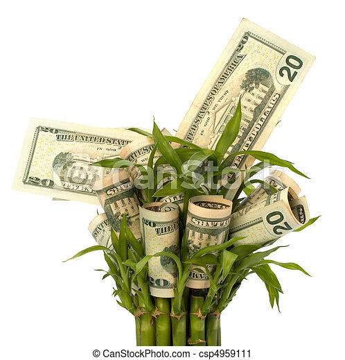 El concepto de crecimiento del dinero - csp4959111