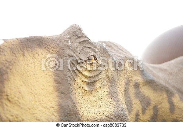 dinosaur eye - csp8083733