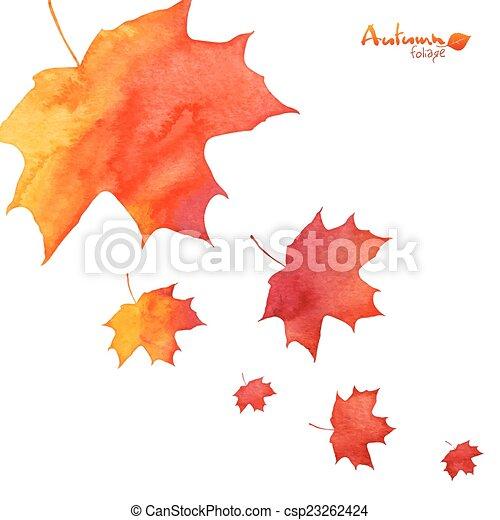 dipinto, foglie, acquarello, cadere, arancia, acero - csp23262424