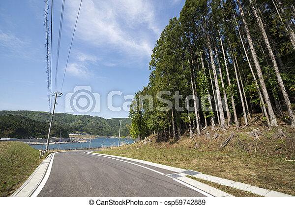 direção, estrada, mar - csp59742889