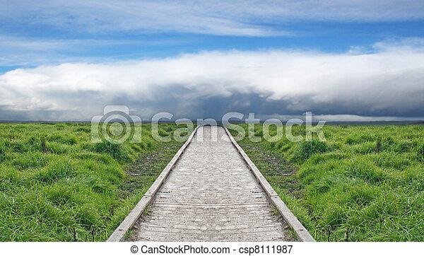 direção, madeira, céu, através, caminho, verde - csp8111987