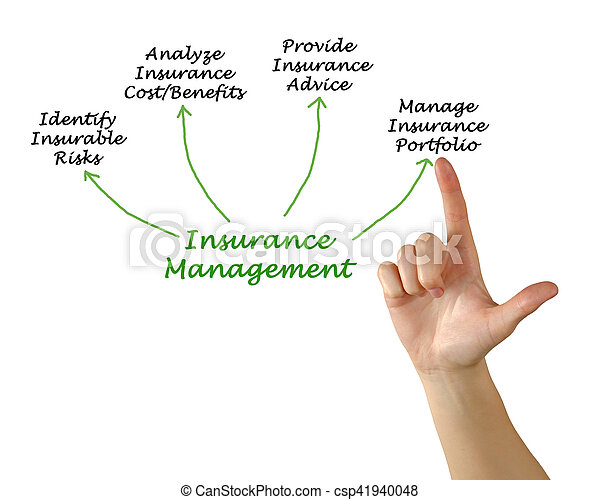 Administración de seguros - csp41940048