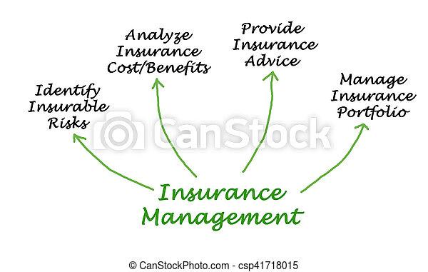 Administración de seguros - csp41718015