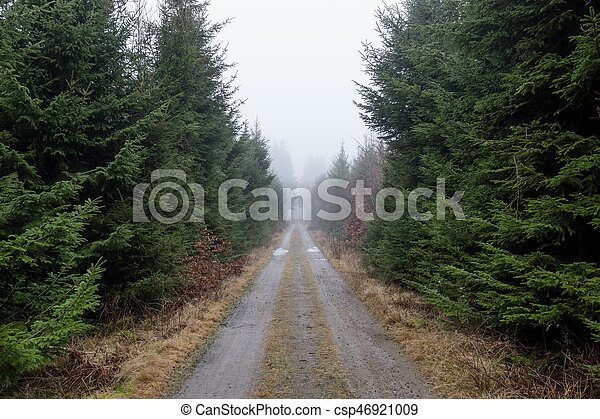 Dirt road disappearing in the mist - csp46921009