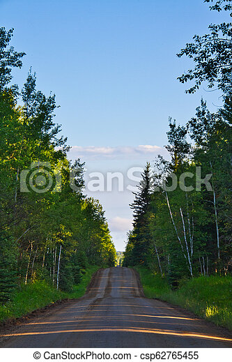 Dirt Road in a Forest - csp62765455