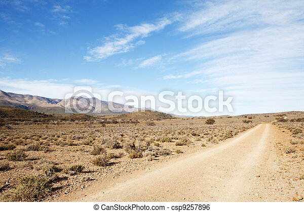 Dirt road in arid region leading away from viewer - csp9257896