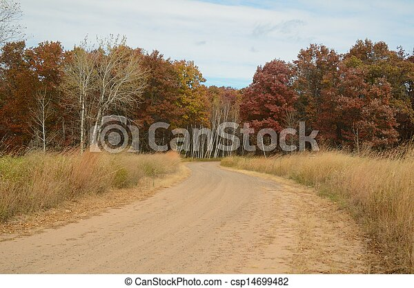 Dirt Road Leading Through Woods - csp14699482