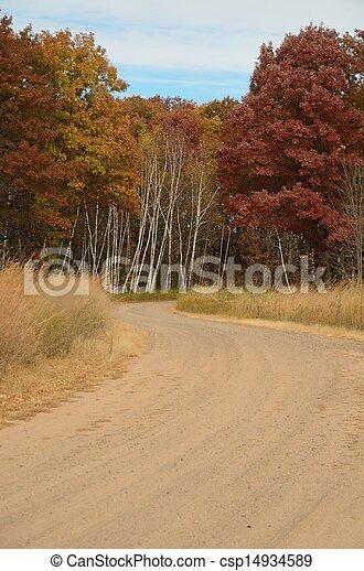 Dirt Road Leading Through Woods - csp14934589