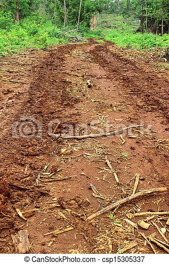 Dirt road on rainy season - csp15305337