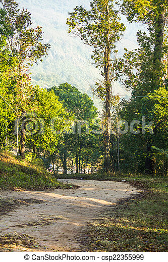 Dirt road with avenue of trees either side - csp22355999
