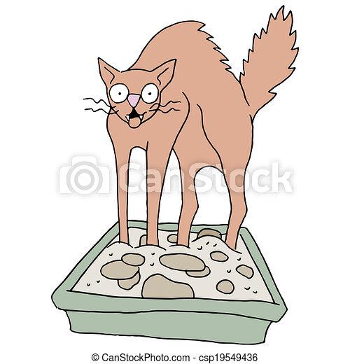 Dirty Cat Litter Box - csp19549436