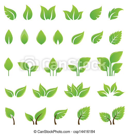 disegno, foglie, set, verde, elementi - csp14416184