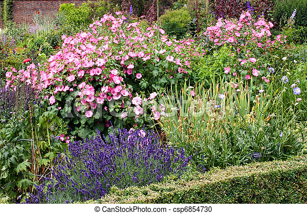 Display of assorted flowers in an english country garden - csp6854730
