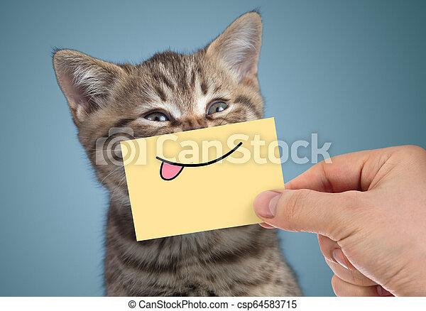 divertido, gato, sonrisa, retrato, lengua, feliz - csp64583715