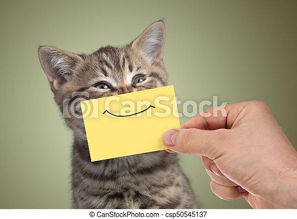 divertido, joven, gato, sonrisa, retrato, cartón, feliz - csp50545137