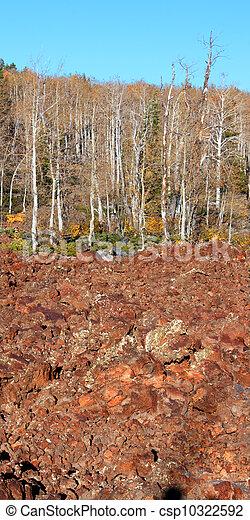 Dixie National Forest Utah - csp10322592