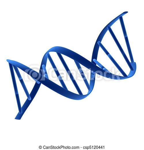 DNA  - csp5120441