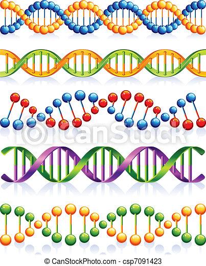 DNA - csp7091423