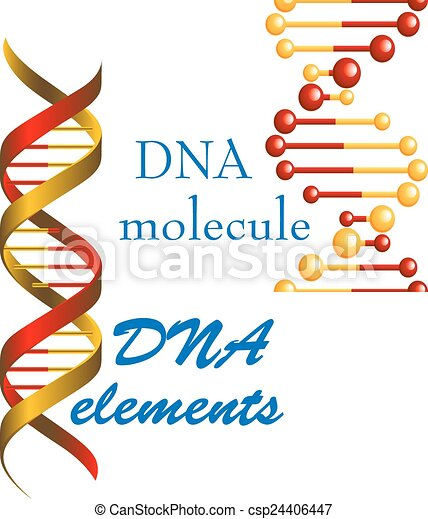 dna molecule and elements symbols for medicine genetics and biology