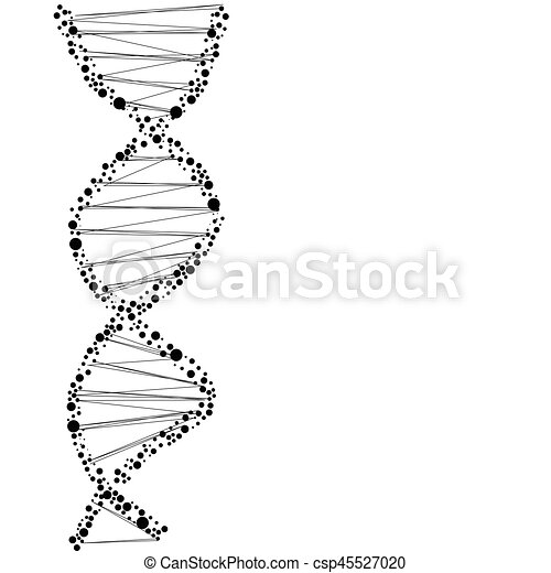 dna molecule structure on the white background