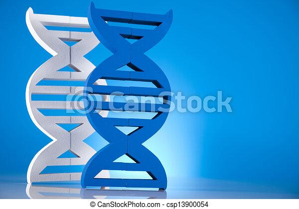 DNA molecules - csp13900054