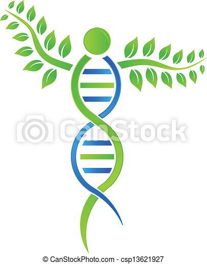 DNA Plant - csp13621927