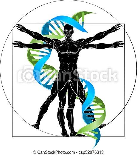 dna vitruvian man dna medical concept with vitruvian man vector rh canstockphoto com vitruvian man vector shutterstock vitruvian man vector download