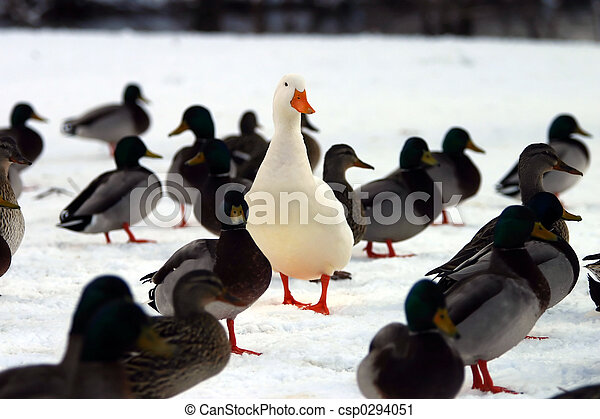 Do you STAND OUT from the crowd? - csp0294051