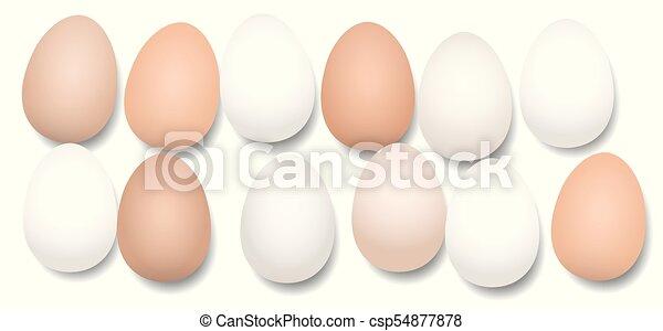 Docena de huevos doce piezas - csp54877878