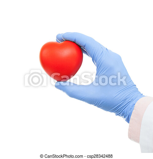 Doctor holding heart shaped toy in hand - csp28342488