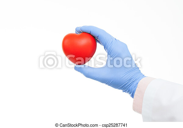 Doctor holding heart shaped toy in hand - csp25287741