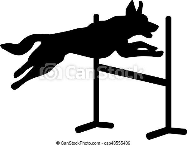 Dog agility jumping over hurdle - csp43555409