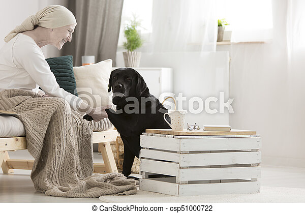 Dog assistant giving paw - csp51000722
