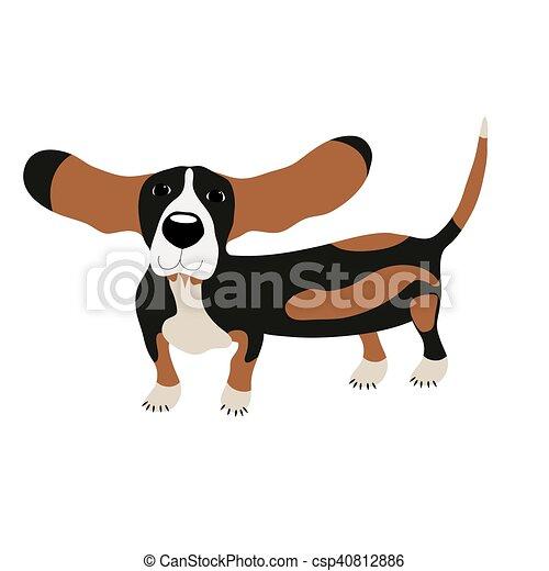 Dog Basset Hound - csp40812886