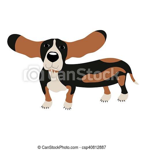 Dog Basset Hound - csp40812887