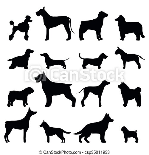 Dog breed black silhouette - csp35011933