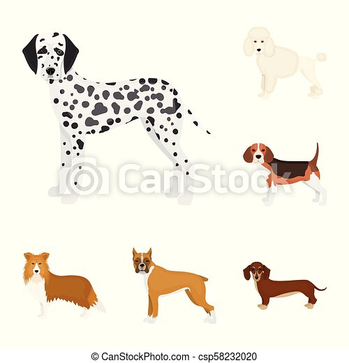 Dog breeds cartoon icons in set collection for design. Dog pet vector symbol stock web illustration. - csp58232020